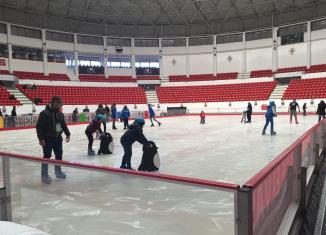 Única pista de gelo verdadeiro em Portugal já recebeu mais de meio milhão de visitantes