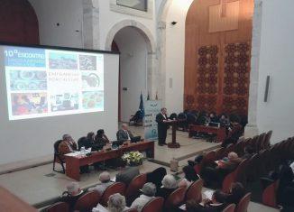 Banco Alimentar reúne-se em Portalegre