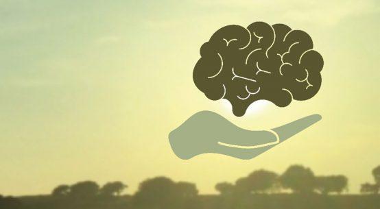 Alentejo, precisamos falar de Saúde Mental