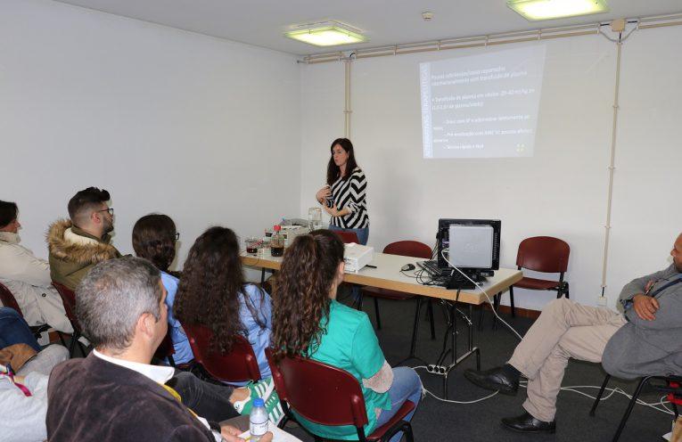 Workshops animam o coliseu de Elvas