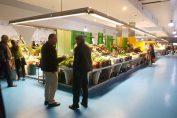 As histórias de quem vende no Mercado Municipal